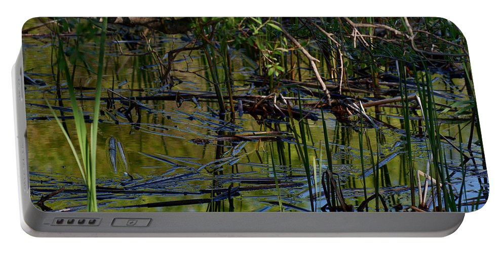 Grand Beach Marsh Manitoba Canada Portable Battery Charger featuring the photograph Grand Beach Marsh by Joanne Smoley