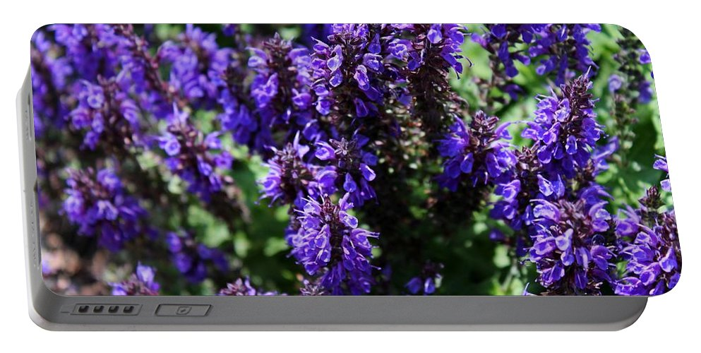Flower Portable Battery Charger featuring the photograph Grape Glory by Michiale Schneider