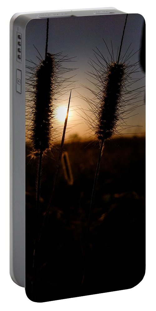 Sunshine Portable Battery Charger featuring the photograph Grass by Naveen Muvva