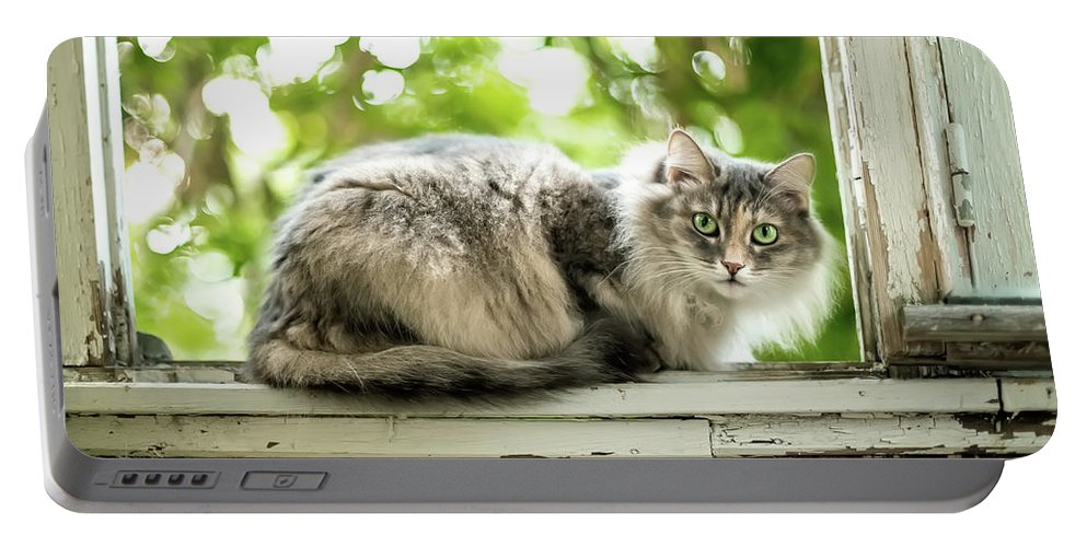 Adorable Portable Battery Charger featuring the photograph Gray Cat Sitting On A Balcony by Oksana Ariskina
