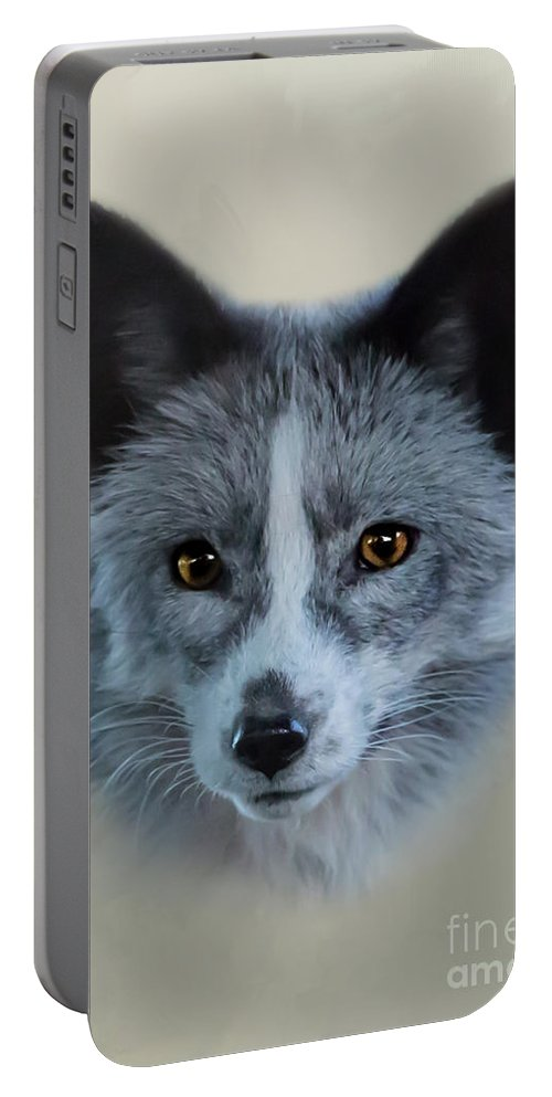 Portable Battery Charger featuring the photograph Gray Fox Head Study by Erin Schwartzkopf