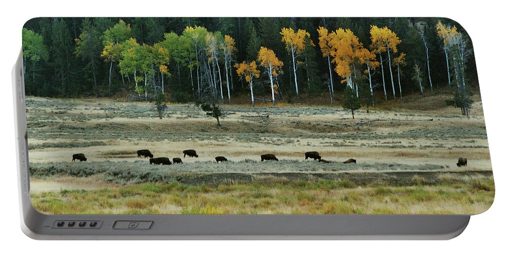 Bison Portable Battery Charger featuring the photograph Grazing Bison by Michael Peychich