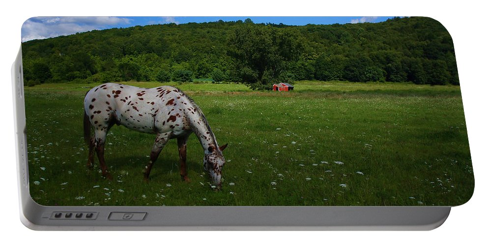 Landscape Portable Battery Charger featuring the photograph Grazing by Karol Livote