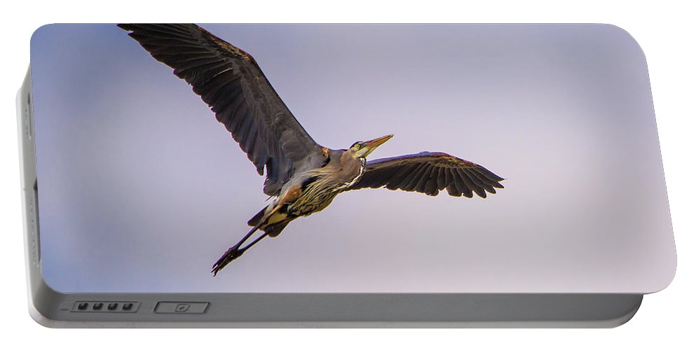 Blue Heron Portable Battery Charger featuring the photograph Great Blue Gliding by David F Hunter