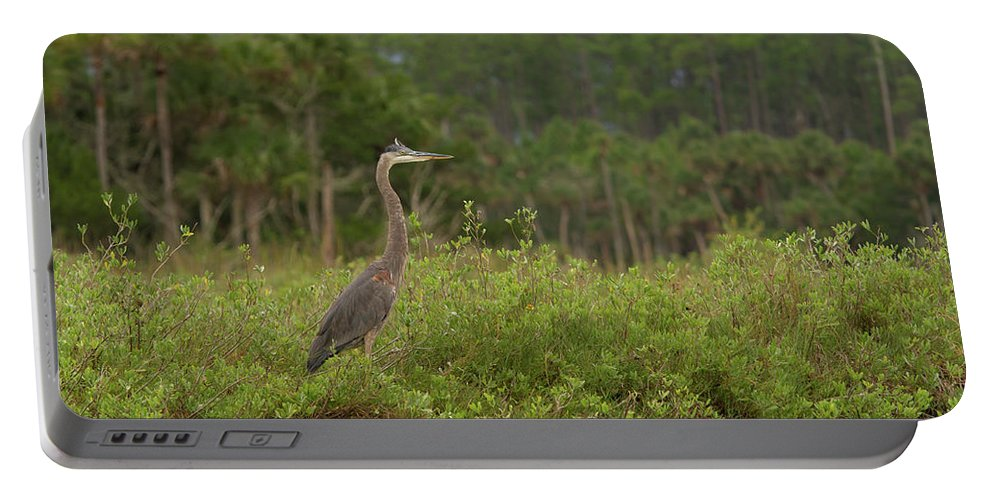 Heron Portable Battery Charger featuring the photograph Great Blue Heron Along Cedar Creek by Paul Rebmann