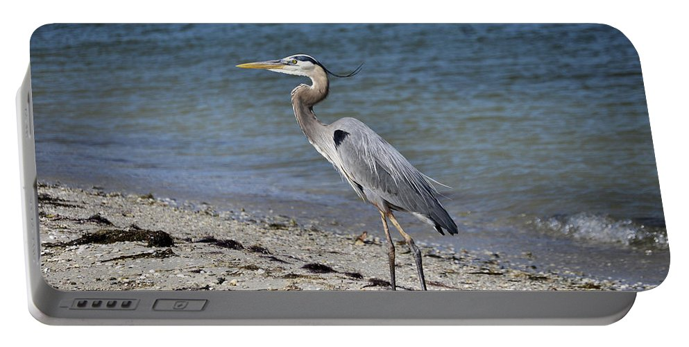 Heron Portable Battery Charger featuring the photograph Great Blue Heron by Deborah Weinhart