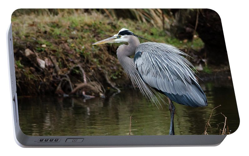 Hero Portable Battery Charger featuring the photograph Great Blue Heron On The Watch by George Randy Bass