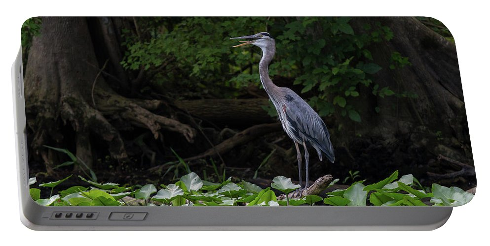 Heron Portable Battery Charger featuring the photograph Great Blue Heron by Paul Rebmann
