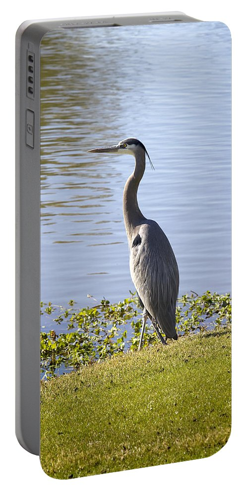 Heron Portable Battery Charger featuring the photograph Great Blue Heron by Phyllis Denton