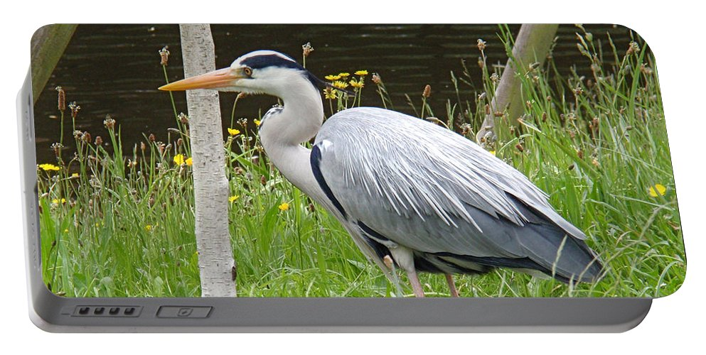 Heron Portable Battery Charger featuring the photograph Great Blue Heron by Rona Black
