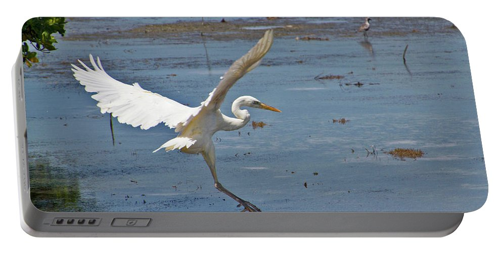 Bird Portable Battery Charger featuring the photograph Great Egret Ascending by Bob Slitzan