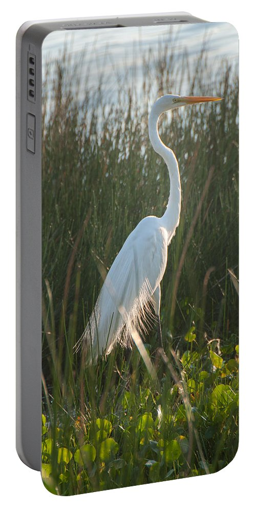 Yucatan Peninsula Portable Battery Charger featuring the digital art Great Egret At Coba Village by Carol Ailles