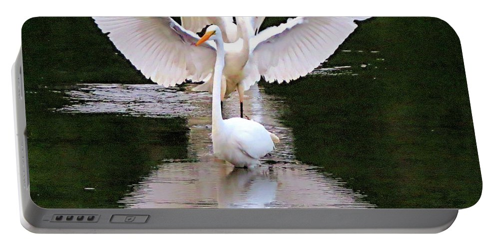 Great Egret Portable Battery Charger featuring the photograph Great Egret Ballet by George Savic