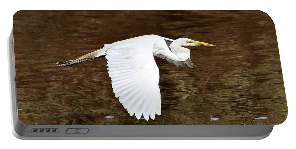Great Egret Portable Battery Charger featuring the photograph Great Egret In Flight by Al Powell Photography USA