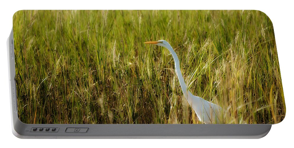 Ardea Alba Portable Battery Charger featuring the photograph Great Egret In The Morning Dew by Rich Leighton