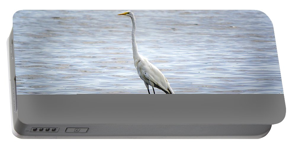 Egret Portable Battery Charger featuring the photograph Great Egret by Kenneth Albin