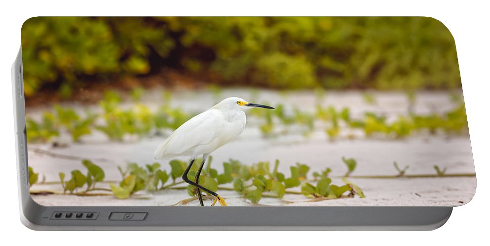 Naples Portable Battery Charger featuring the photograph Great Egret by Peter Lakomy