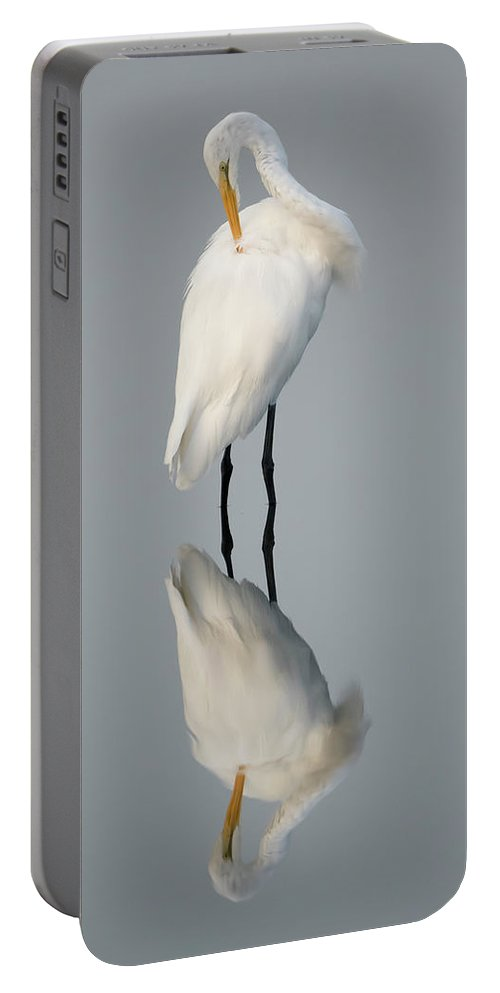 Great Egret Reflection Portable Battery Charger featuring the photograph Great Egret Reflection by George DeCamp