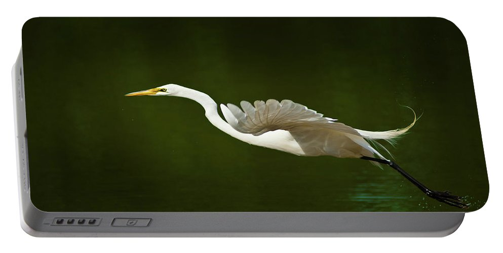 Great Egret Portable Battery Charger featuring the photograph Great Egret Takeoff by Onyonet Photo Studios