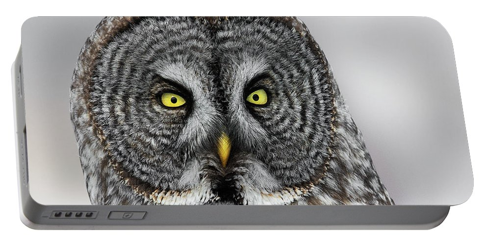 Owl Portable Battery Charger featuring the photograph Great Gray Owl Portrait by Christopher Ciccone