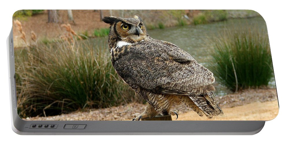 Wildlife Portable Battery Charger featuring the photograph Great Horned Owl 1 by Robert Meanor