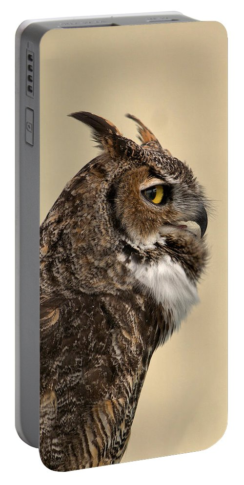 Great Horned Owl Portable Battery Charger featuring the photograph Great Horned Owl by Michael Gordon