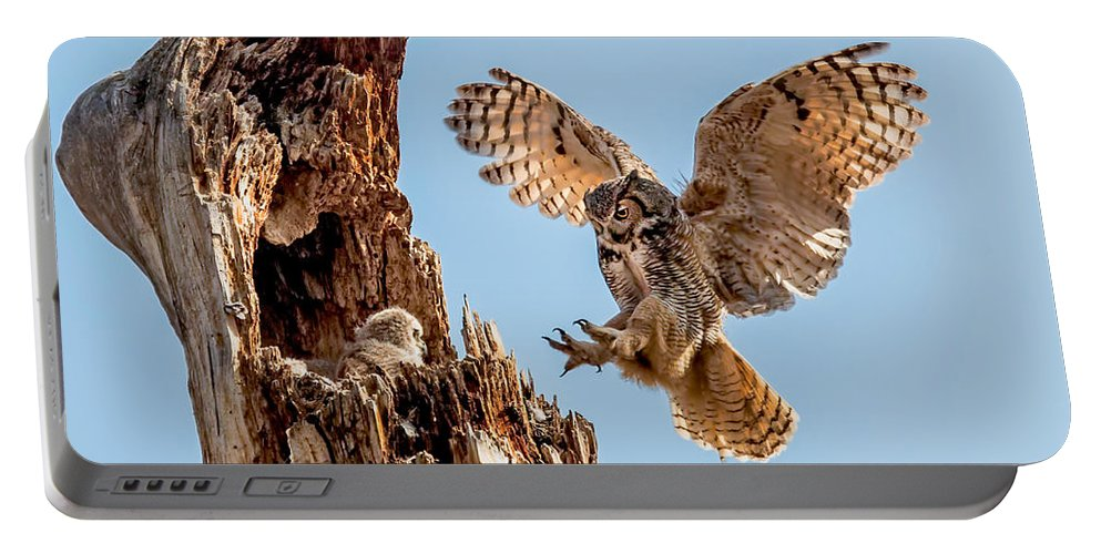 Bubo Virginianus Portable Battery Charger featuring the photograph Great Horned Owl Returning To Her Nest by Dawn Key