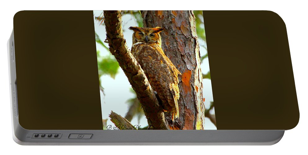 Great Horned Owl Portable Battery Charger featuring the photograph Great Horned Owl Wink by Barbara Bowen