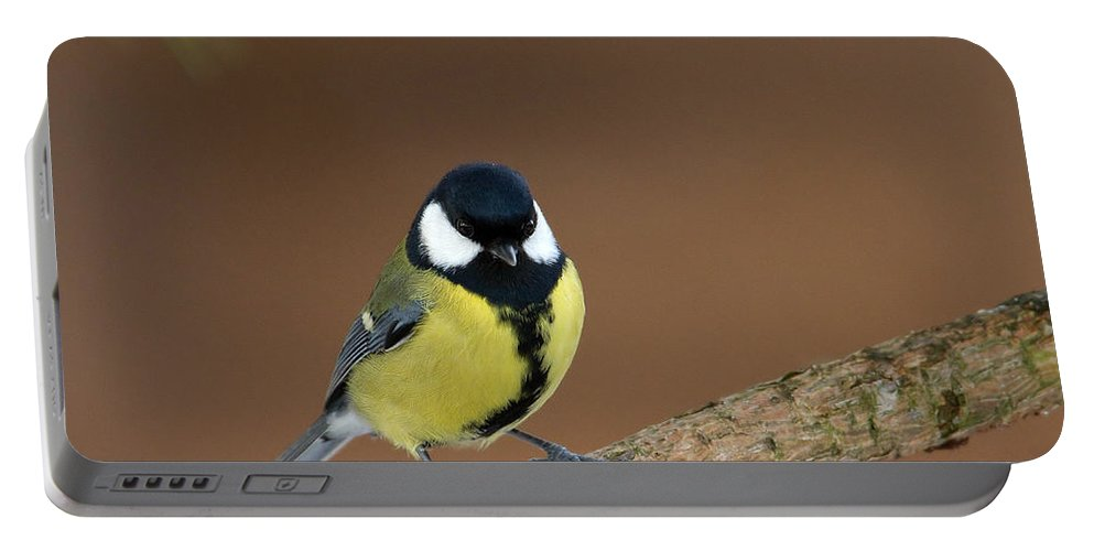 Great Tit Portable Battery Charger featuring the photograph Great Tit by Bob Kemp