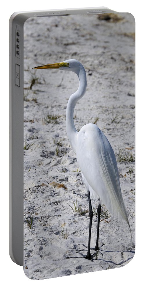 White Portable Battery Charger featuring the photograph Great White Egret by Deborah Weinhart