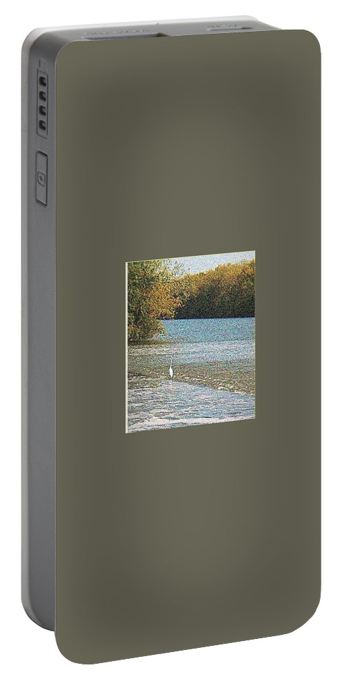 Great White Egret Portable Battery Charger featuring the photograph Great White Egret Fishing by Raida Khamis