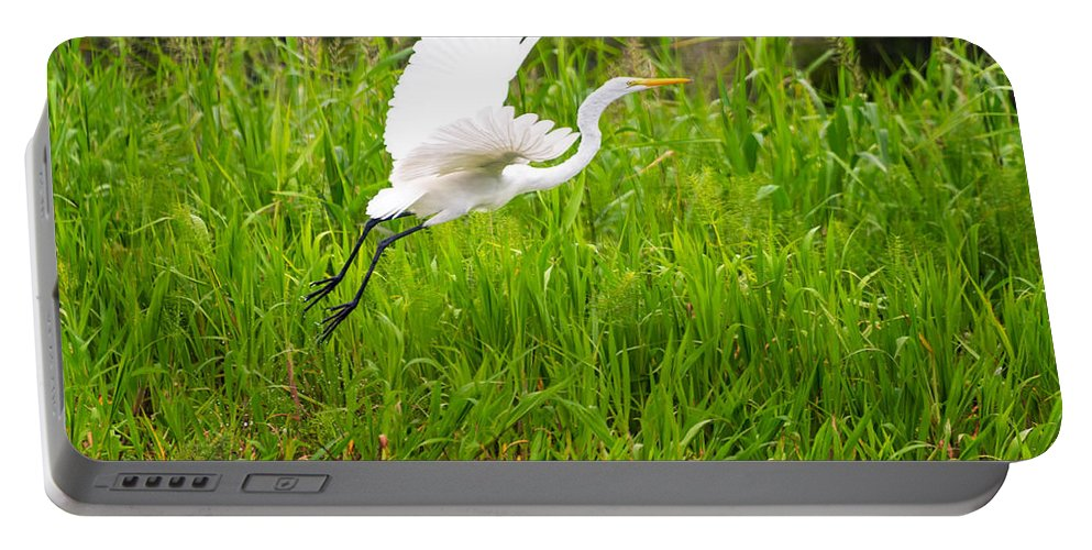 Egret Portable Battery Charger featuring the photograph Great White Heron Takeoff by Jess Kraft
