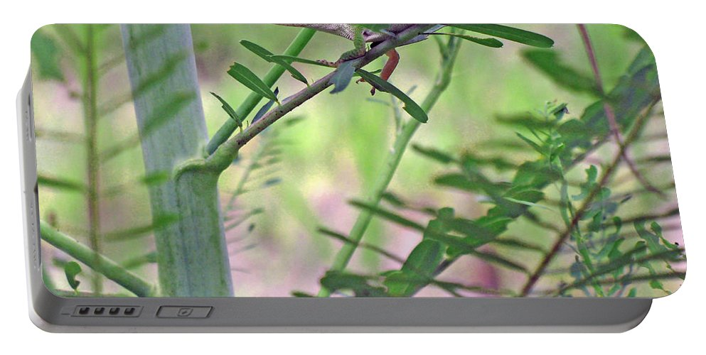 Anole Portable Battery Charger featuring the photograph Green Anole by Kenneth Albin