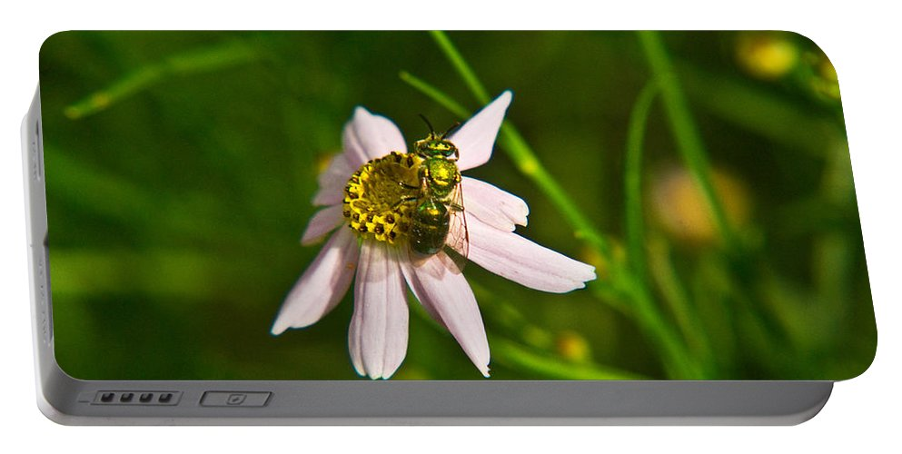 Green Portable Battery Charger featuring the photograph Green Bee Feeding by Douglas Barnett