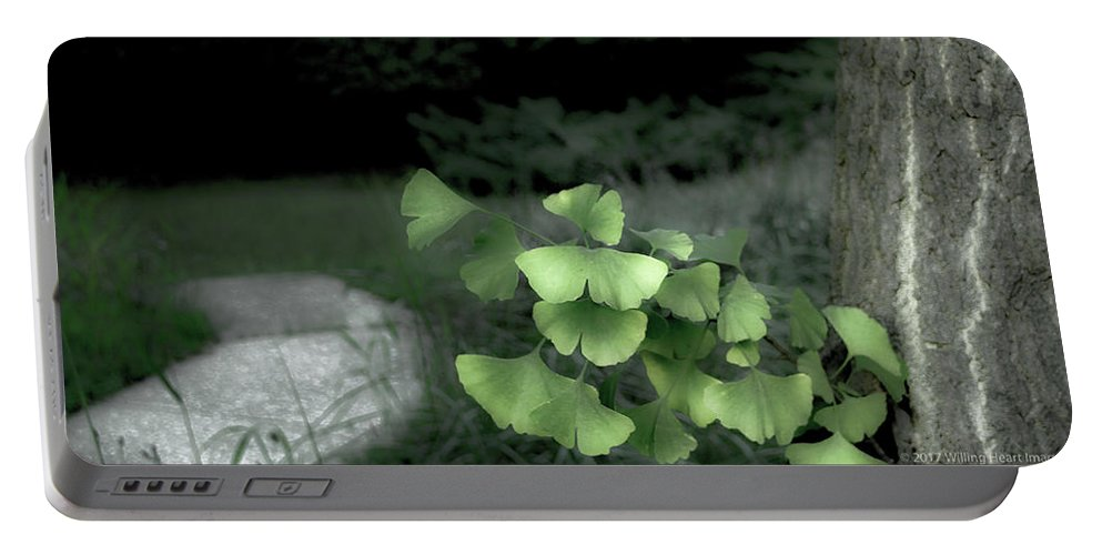 Abstract Portable Battery Charger featuring the photograph Green Butterflies by Donna Fonseca Newton