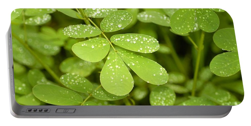 Green Portable Battery Charger featuring the photograph Green by David Lee Thompson