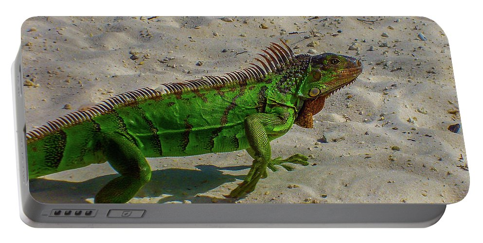 Florida Portable Battery Charger featuring the photograph Green Dragon by David F Hunter