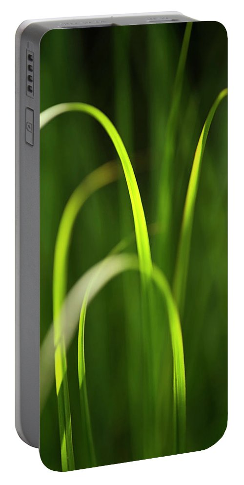 Green Portable Battery Charger featuring the photograph Green Grass by Christina Rollo