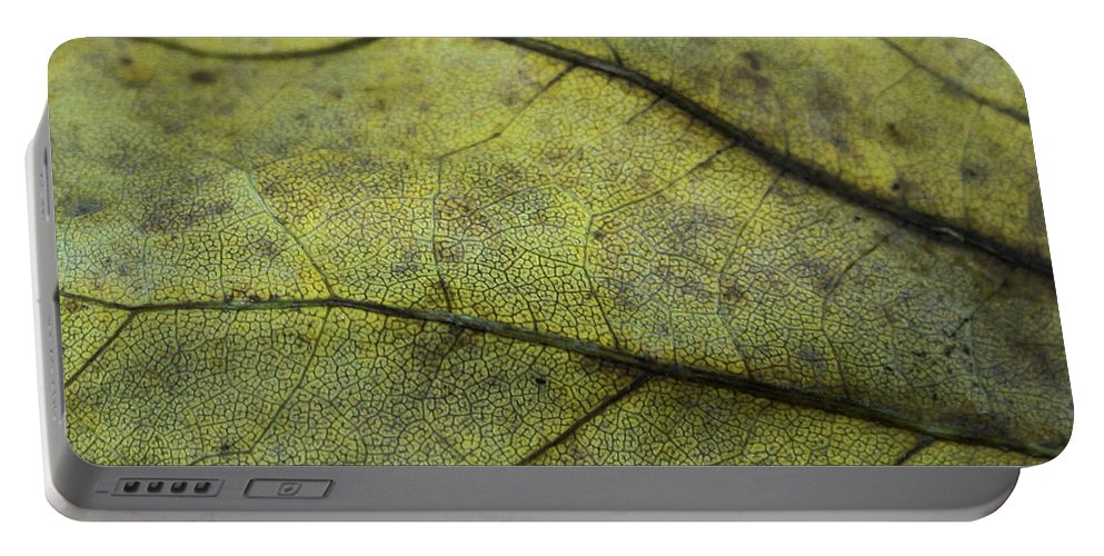Nature Portable Battery Charger featuring the photograph Green Leaf by Linda Sannuti