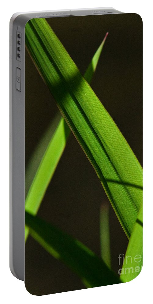 Green Portable Battery Charger featuring the photograph Green Leaves In Sunlight by Martha Johnson