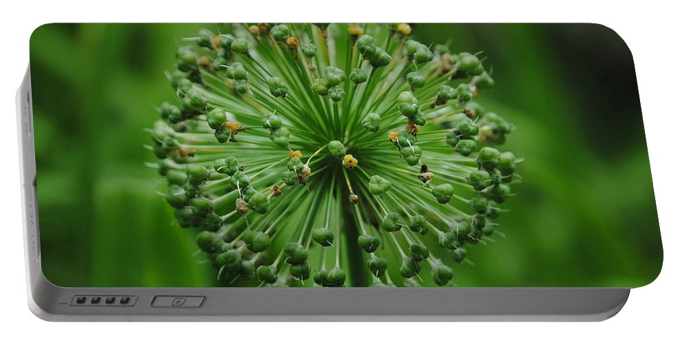 Green Portable Battery Charger featuring the photograph Green On Green by Eric Liller