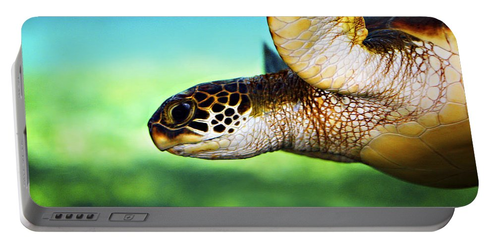 Green Portable Battery Charger featuring the photograph Green Sea Turtle by Marilyn Hunt