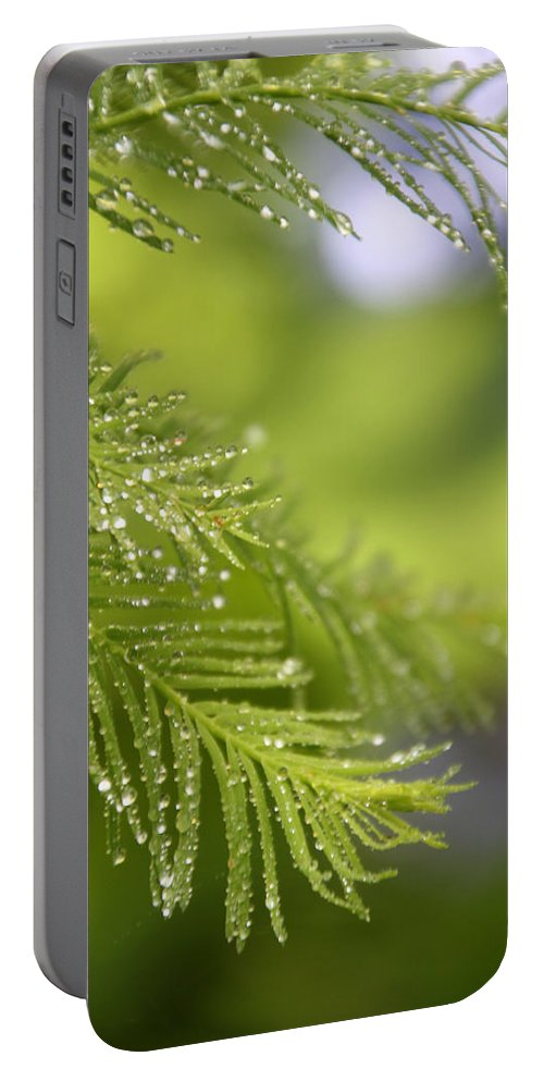 Green Portable Battery Charger featuring the photograph Greenery 1318 by Carolyn Stagger Cokley