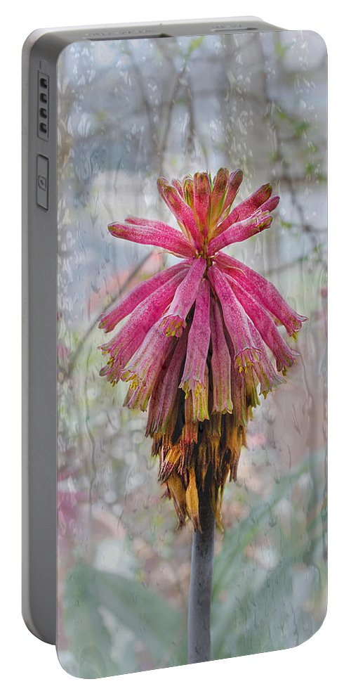 Susan Vineyard Portable Battery Charger featuring the photograph Greenhouse On A Rainy Day by Susan Vineyard