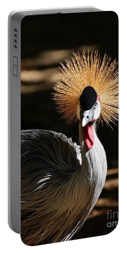 Wildlife Portable Battery Charger featuring the photograph Grey Crowned Crane by Kathy Baccari