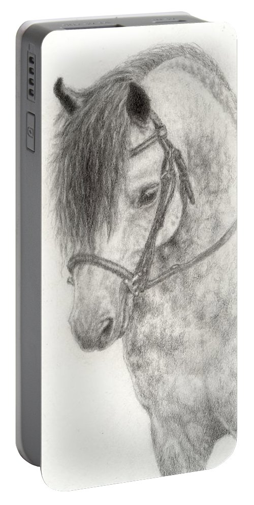 Pony Portable Battery Charger featuring the drawing Grey Pony by Jennifer Nilsson