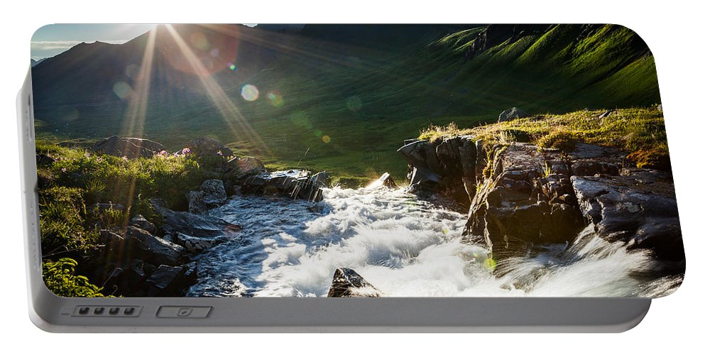 Alaska Portable Battery Charger featuring the photograph Grizzly Bear Falls by Tim Newton