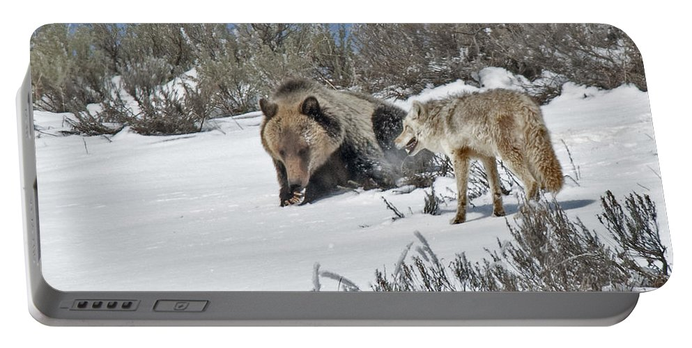 Grizzly Portable Battery Charger featuring the photograph Grizzly With Coyote by Gary Beeler