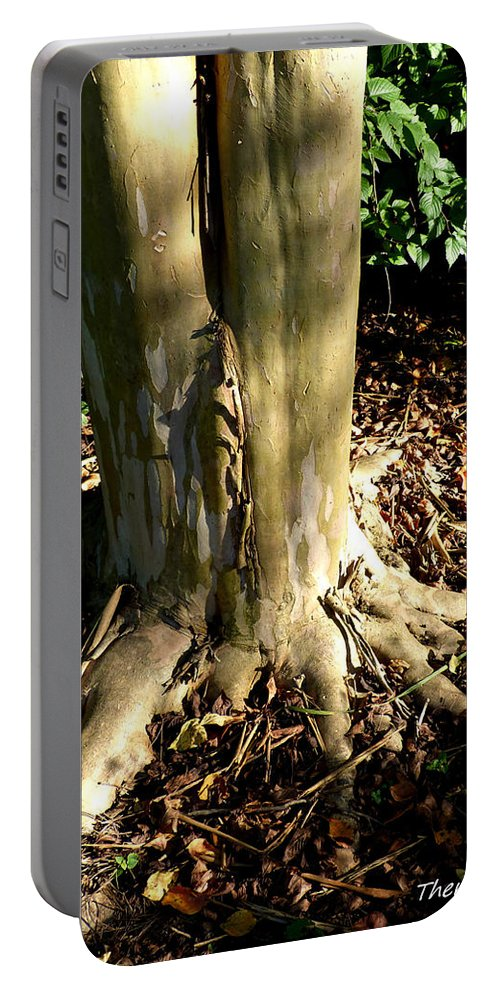 Tree Portable Battery Charger featuring the photograph Grounded by Theresa Asher