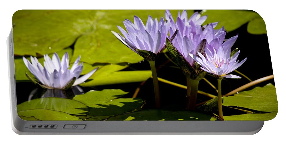 Purple Portable Battery Charger featuring the photograph Group Of Lavender Lillies by Teresa Mucha